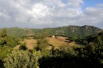 A glimpse of the organic farm in the background of Micciano